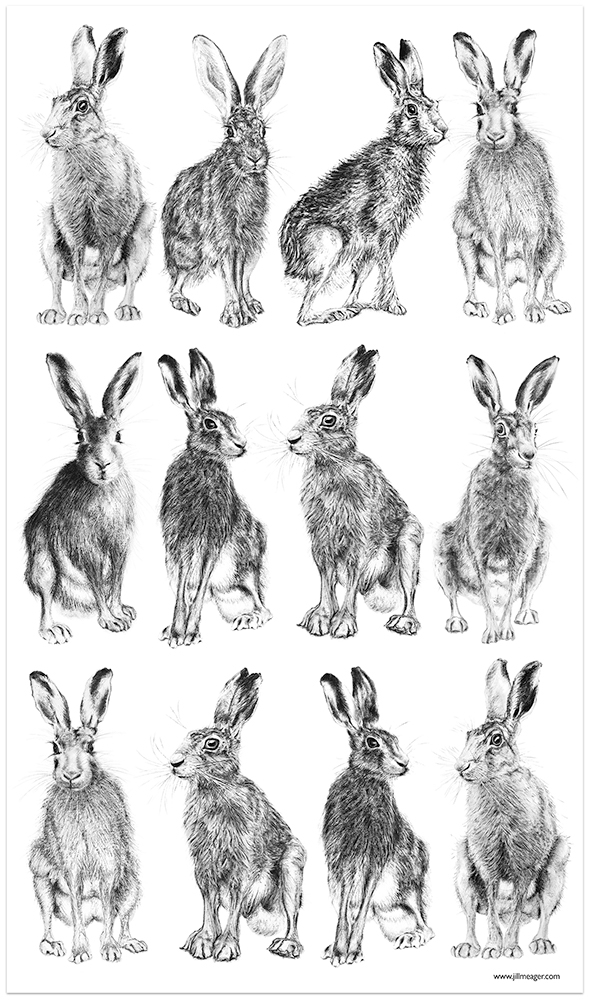 Hare Tea towel