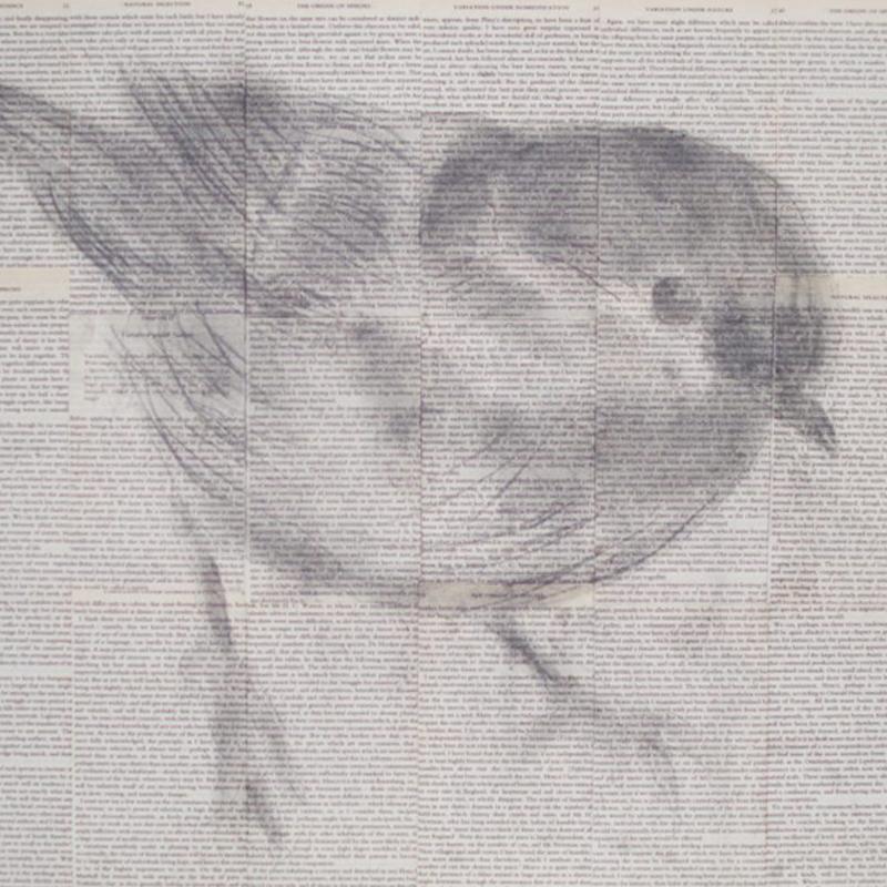 Darwins Birds